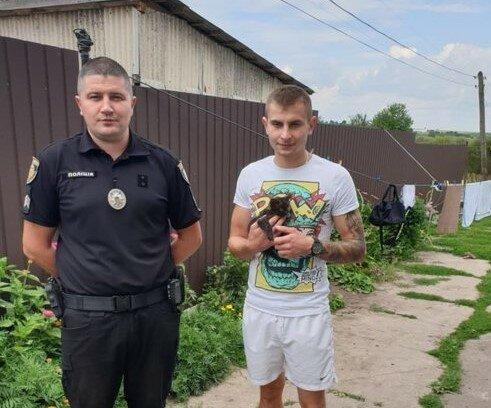 На Львовщине схватили мучителя беззащитного котенка - закатал в банку ради видео