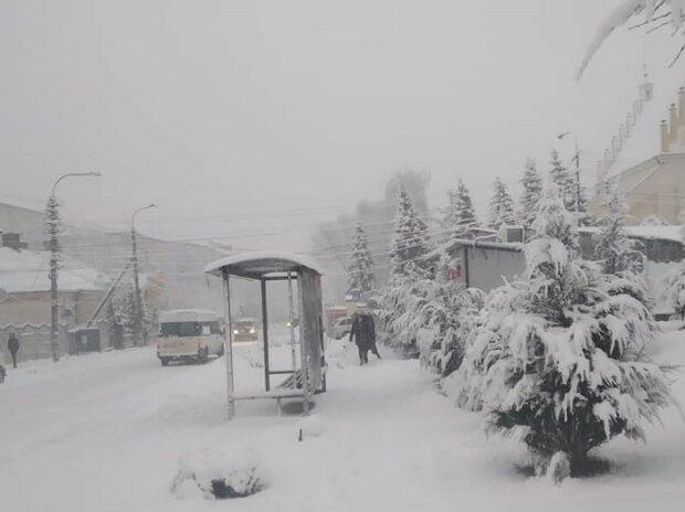 Львов засыпало снегом, фото: Галина Сорока / ФБ