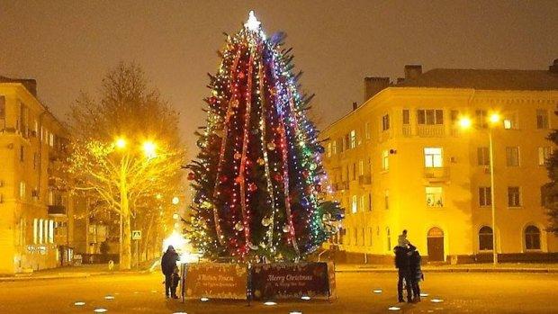"""Спецоперация """"Найти гринча"""": полиция разыскивает воров гирлянды главной елки"""