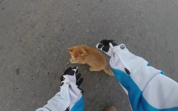 Киевский водитель поразил человечностью: видео
