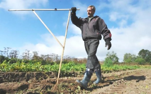 Земельная реформа: в МВФ рассказали о важных изменениях