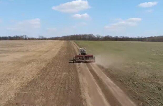 Ринок землі, кадр з відео