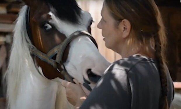 """В Черновцах мать с дочерью спасают лошадей от скотобойни - """"Заберите, пустят на мясо"""""""