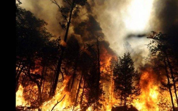 Кілометри вогню: у Росії оголосили надзвичайний стан