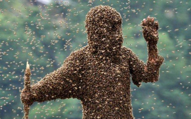 Бджоли атакували центр Лондона