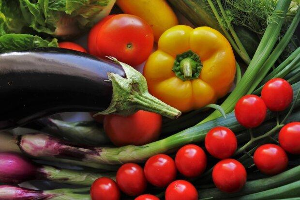 Як поливати баклажани і перець для багатого врожаю: прості правила для городників