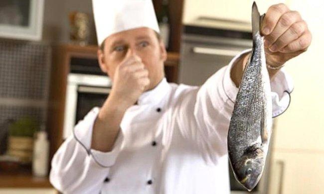 Запах риби стимулює раціональне мислення