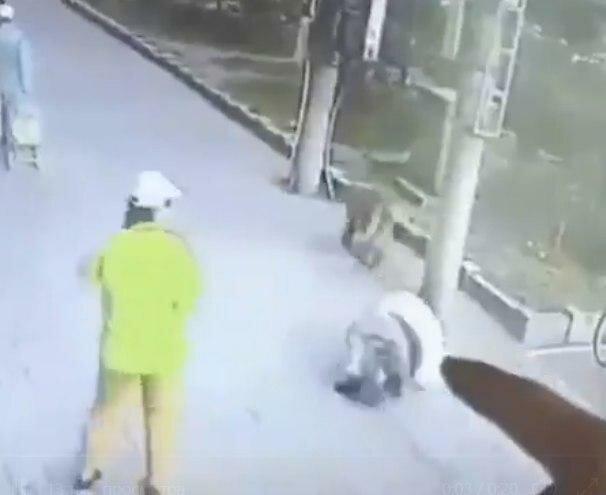 """Пухнастий ніндзя змусив мережу ридати: """"Нокаутував чоловіка і побився з собакою у черевиках"""""""