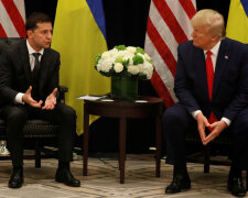 Владимир Зеленский и Дональд Трамп, РБК