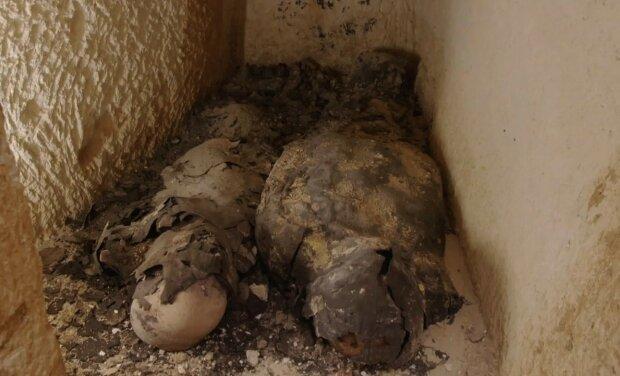 Мумии в Египте, фото: The Guardian