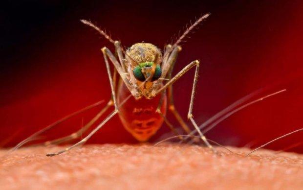 Страшное заболевание уже в Киеве: укус комара может занести паразита, который вырастет у вас под кожей