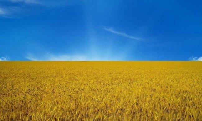 К чему бы вы привели Украину?