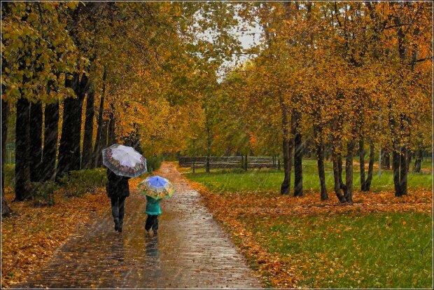 Дождь стеной: стихия загонит винничан под зонтики 20 ноября