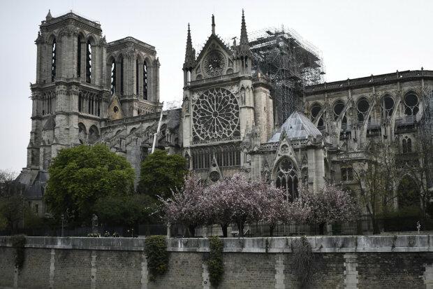 """Нотр-Дам не переживе """"операцію""""? Експерти оголосили серйозну проблему у відновленні Собору Паризької Богоматері"""