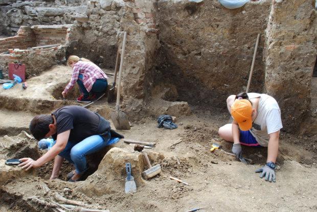 На Львовщине отыскали следы древней цивилизации, вот чем занимались наши предки: ученые в шоке от увиденного
