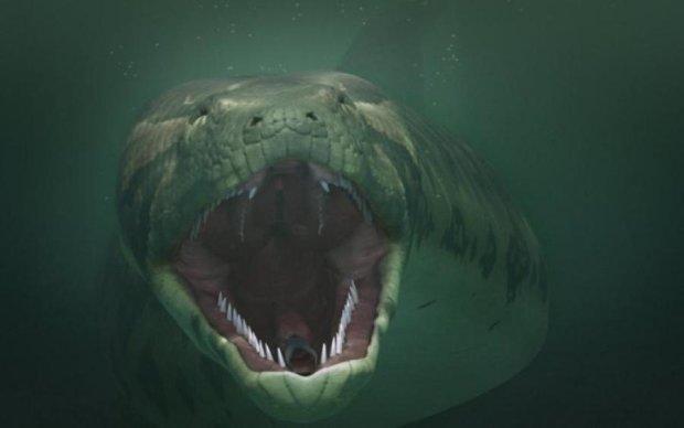 Могла з'їсти слона: знайдено найвеличезнішу змію на планеті