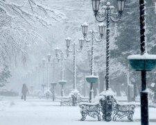 Снегопад, НП