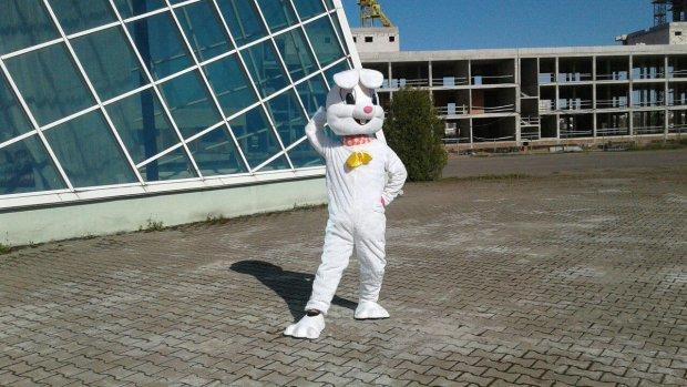 Пасхальный кролик встал на защиту справедливости