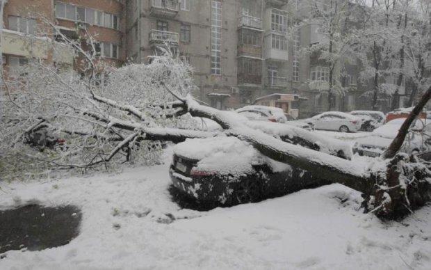 Транспортний колапс та перші жертви: Європу паралізували снігопади