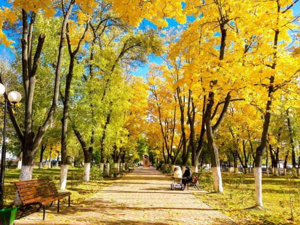 Погода на 21 жовтня: осінь не припиняє тішити українців, свіжий прогноз