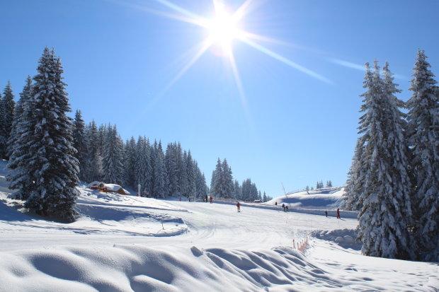мороз і сонце