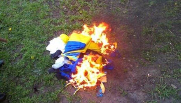На Донбассе пьяный парень уничтожил главную украинскую гордость: сжег на глазах людей