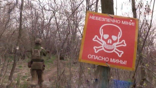 Донбас, фото: скріншот з відео