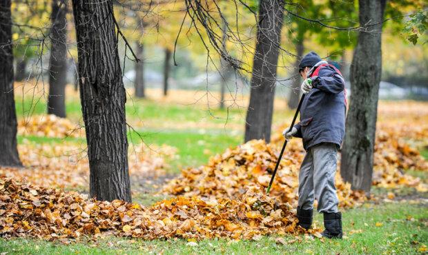 """У Запоріжжі карають любителів """"чих-пих"""": який штраф загрожує за спалювання листя"""