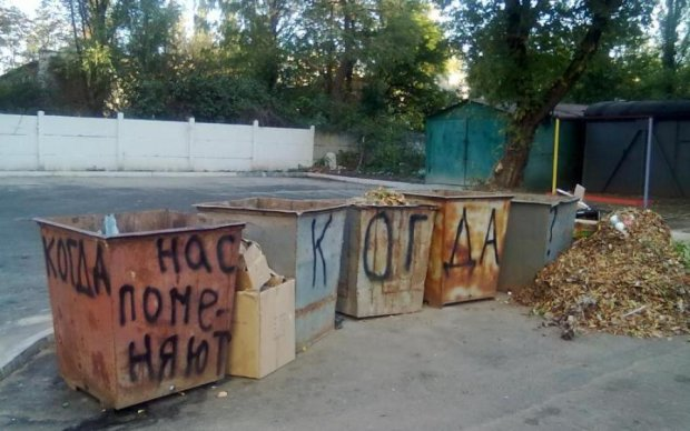 Встали с колен: россияне подрались у мусорника за бездуховные бургеры