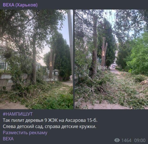 Публикация канала ВЕХА (Харьков): Telegram