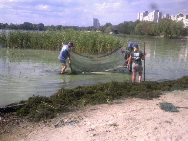 Киевский Днепр превратился в помойную яму, катастрофа уже на пороге: экологи вывели виновников на чистую воду