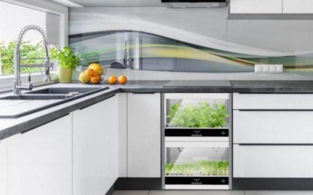 Як влаштувати домашню ферму просто на кухні: фото