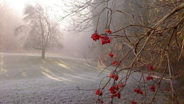 Вінниця потоне в туманах та дощах: синоптики дали невеселий прогноз на 15 грудня