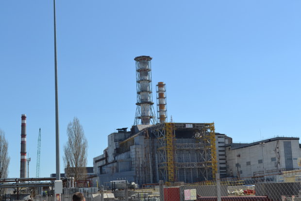 У Чорнобилі схопили сталкерів і экстремалку з небезпечними ягодами: дивна компанія замислила страшне, українці лютують