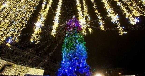 Новый год на носу: когда в Киеве начнут устанавливать елку
