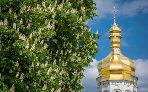 Киевские каштаны поздравили украинцев с Днем Независимости