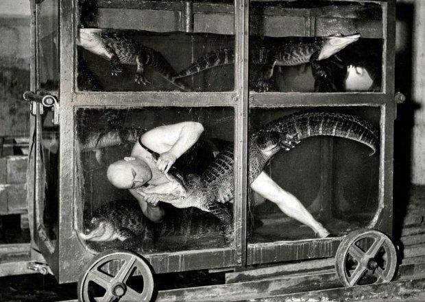 фото из коллекции Роба Муріса