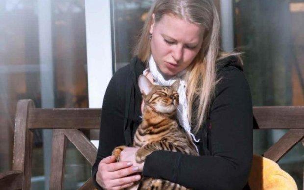 Ученые рассказали о целебной способности котов