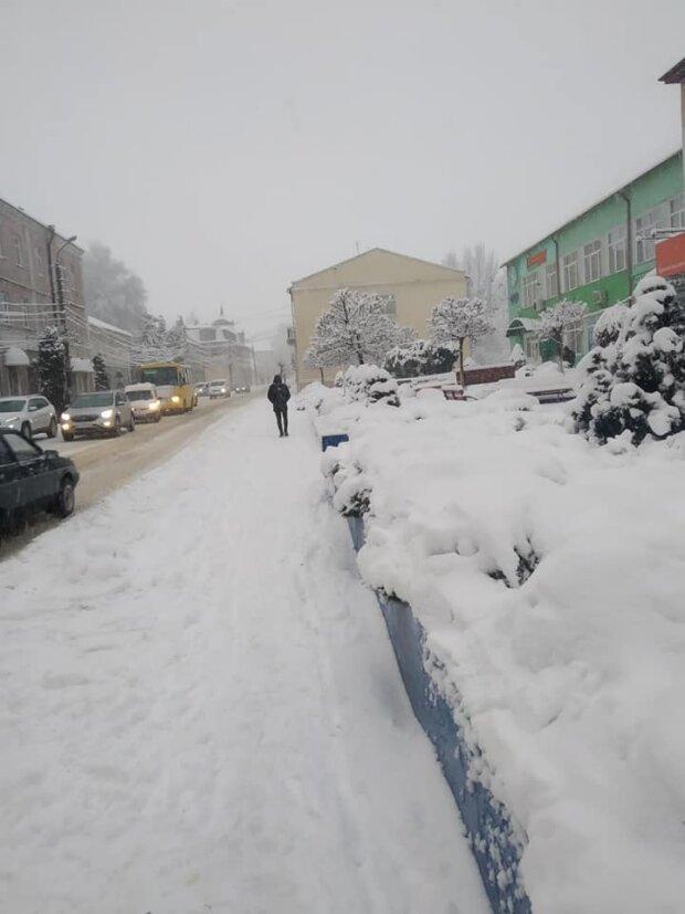 Львів засипало снігом, фото: Галина Сорока/ФБ