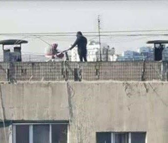 прогулка на крыше, фото: Телеграм