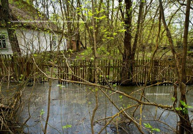 Наводнение, фото: Денис Вишневский