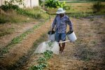 Фермер, фото из открытых источников
