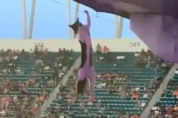 Випадок з котом на стадіоні, скріншот: Twitter