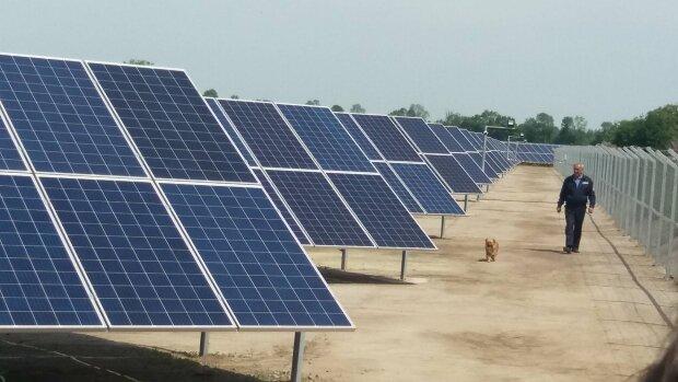 Сектор зеленої енергетики стикнувся з новим видом тиску, ілюстративне фото