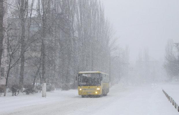 Спливла страшна правда про смерть замерзлої під Житомиром студентки: не перша жертва