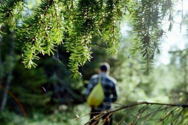 Прогулянка лісом обернулася трагедією: під Києвом знайшли труп чоловіка із палицею в руках