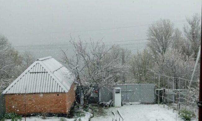 Киевщину засыпало снегом фото: Главком