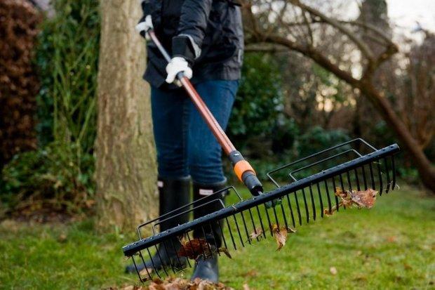 Девушка решила убраться во дворе и не пожалела: в куче мусора лежал приз за трудолюбивость