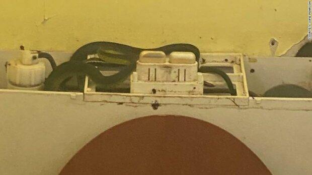Девушка нашла змей в унитазе, фото 7News