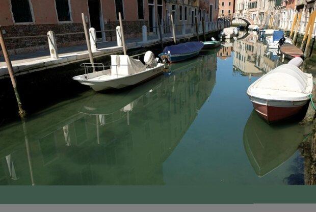 Весна пандемії не боїться: Венеція зворушливо зустріла прекрасних мешканців